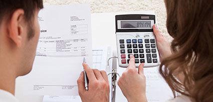 budget check guaranteed loan rapid